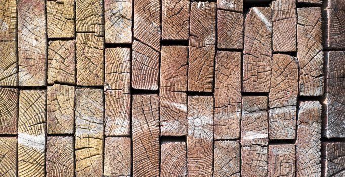 palivové dřevo prodej